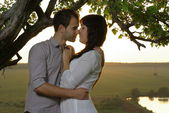 Couple kissing under tree — Stock Photo