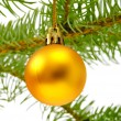 Christmas decoration — Stock Photo #13670941