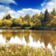 Lake, autumn wood and the blue sky — Stock Photo