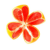 Cut grapefruit — Stock Photo
