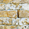 Wall from a calcareous brick — Stock Photo