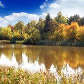 Lake — Stock Photo