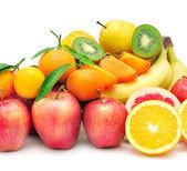 Zbiór owoców — Zdjęcie stockowe