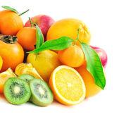 Frutas de colección — Foto de Stock