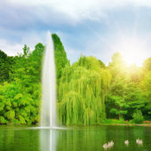 Large fountain in the lake sunlit — Stock Photo