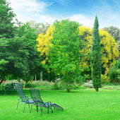 Lounge chairs for relaxing in the summer park — Stock Photo