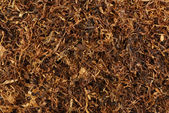 Dried smoking tobacco  — Stock Photo