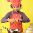Little Chef — Stock Photo #22608799
