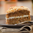 Carrot Cake — Stock Photo #41232297