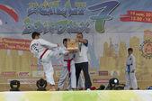 Luchadores de taekwondo de rendimiento — Foto de Stock