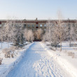 Omsk in Siberia in winter — ストック写真