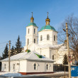 Stock Photo: Tarskaychurch in Omsk winter