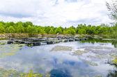 Fish farm ponds in Thailand — Stock Photo
