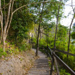 Wooden walkway on top of the mountain — Stock Photo