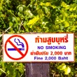 Royalty-Free Stock Photo: A poster with the smoking ban in Thailand with a fine of 2,000 baht