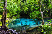 The Blue Lagoon, a lake and a spring in the jungle — Stock Photo