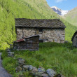 Stone house in the Alpine shepherds village in the Italian Alps of summer meadows — Stockfoto