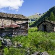 Stone house in the Alpine shepherds village in the Italian Alps of summer meadows — Stock fotografie