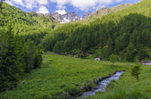 Alpine meadow landscape of high mountains on a clear summer, sunny day. Northern Italy — Stock Photo