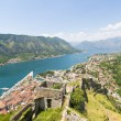 View of the old town of Kotor on. Red tiled roofs and bay south fjord — Stock Photo #51555429