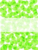 新鮮な緑の葉の背景 — ストックベクタ
