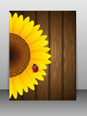 Sunflower and ladybird on wooden background. — Stock Vector