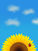 Sunflower and ladybird on blue sky. — Stock Vector