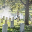 Cemetery with many tombstones — Stock Photo #14584361