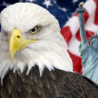 Bald eagle with american flag out of focus. — Photo