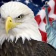 Bald eagle with american flag out of focus. — Stock fotografie