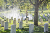 Cemetery with many tombstones — Stock Photo