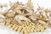 Soybeans on white background — Stock Photo