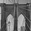 Brooklyn Bridge — Stock Photo #14760983