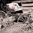 Antique vintage buggy — Stock Photo #14761321
