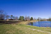 Small lake — Stock Photo