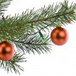 Stock Photo: Christmas decorations on pine branch isolated on white