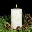 Pine cone and christmas greens and burning candle — ストック写真