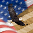 图库照片: Close up of bald eagle flying in front of americflag with vertical stripes and tight depth of field
