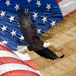 Close up of bald eagle flying in front of american flag with vertical stripes and tight depth of field — Stock Photo #14930825