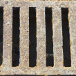 Drain grate - Stock Photo