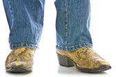 Legs in Jeans and snakeskin Cowboys Boots — Stock Photo
