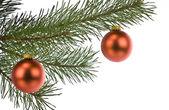 Adornos navideños en pino rama aislado en blanco — Foto de Stock