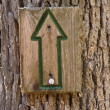 Stock Photo: Green directional sign up