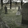 Old cemetery — Foto de Stock