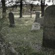 Stock Photo: Old cemetery
