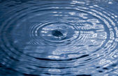 Blue water drop and splash. — Stock Photo