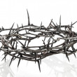 Crown of thorns — Stock Photo #19748711