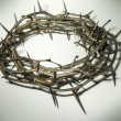 Crown of thorns — Stock Photo #19748721