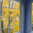 Stock Photo: Autumn leaves at window