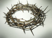 Crown of thorns — Zdjęcie stockowe